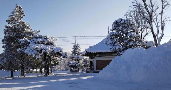 kitahiro_tera20190106.jpg
